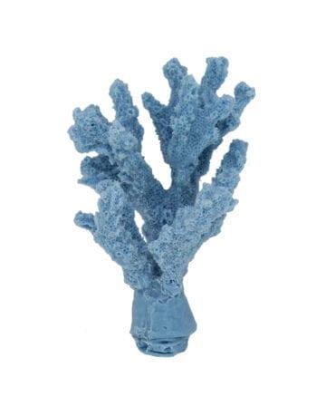 Light Blue Branch Coral 275 Image - Creative Coral Design